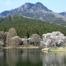 4月春の古賀志山No501